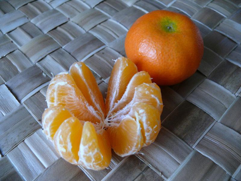 clémentine, clementine