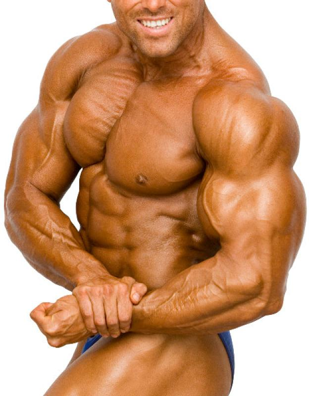 musculation, muscle, masse musculaire